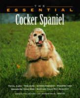 The Essential Cocker Spaniel - Essential Guides (Paperback)