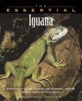 The Essential Iguana - Essential Guide S. (Paperback)