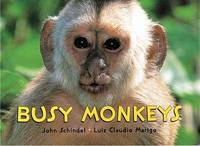 Busy Monkeys - Busy Animals (Board book)