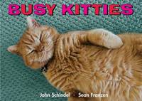Busy Kitties - Busy Animals (Board book)