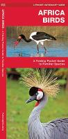 African Birds: A Folding Pocket Guide to Familiar Species - Pocket Naturalist Guide Series