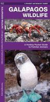 Galapagos Wildlife: A Folding Pocket Guide to Familiar Animals - Pocket Naturalist Guide Series