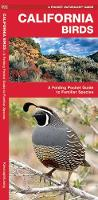 California Birds: A Folding Pocket Guide to Familiar Species - Pocket Naturalist Guide Series