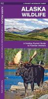 Alaska Wildlife: A Folding Pocket Guide to Familiar Species - Pocket Naturalist Guide Series