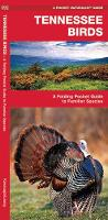 Tennessee Birds: A Folding Pocket Guide to Familiar Species - Pocket Naturalist Guide Series