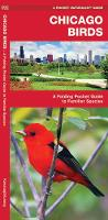 Chicago Birds: A Folding Pocket Guide to Familiar Species in Northeastern Illinois - Pocket Naturalist Guide Series