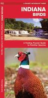 Indiana Birds: A Folding Pocket Guide to Familiar Species - Pocket Naturalist Guide Series