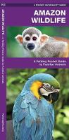 Amazon Wildlife: A Waterproof Pocket Guide to Familiar Species - Pocket Naturalist Guide Series