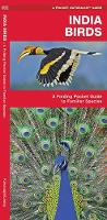India Birds: A Folding Pocket Guide to Familiar Species