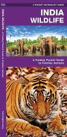 India Wildlife: A Folding Pocket Guide to Familiar Animals
