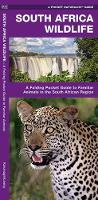 South Africa Wildlife: A Folding Pocket Guide to Familiar Animals