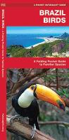Brazil Birds: A Folding Pocket Guide to Familiar Species