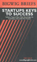 Startups Keys to Success: Industry Experts Share Their Knowledge on Launching a Successful New Venture - Bigwig Briefs S. (Paperback)