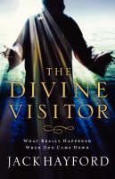 Divine Visitor (Paperback)