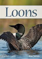 Loons Playing Cards - Nature's Wild Cards