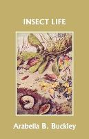Insect Life (Yesterday's Classics) (Paperback)