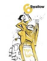 Swallow: Bk. 6 (Paperback)