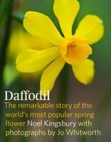 Daffodil (Hardback)
