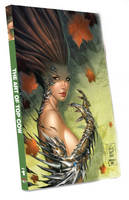 The Art of Top Cow (Paperback)
