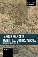 Labour Markets, Identities, Controversies: Reviews and Essays, 1982-2016 (Paperback)