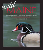 Wild Maine: Discoveries of a Wildlife Photographer (Paperback)