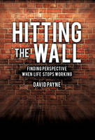 Hitting the Wall (Hardback)