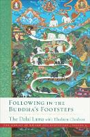 Following in the Buddha's Footsteps: The Library of Wisdom and Compassion. Volume 4 (Hardback)