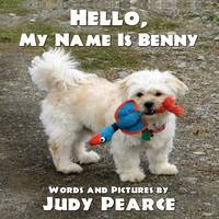 Hello, My Name Is Benny (Paperback)
