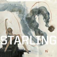 Starling Book 1: Ashley Wood (Hardback)