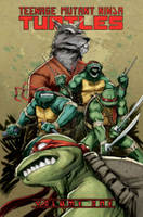 Teenage Mutant Ninja Turtles Volume 1 Shell Unleashed (Paperback)