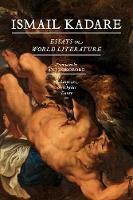 Essays On World Literature: Shakespeare, Aeschylus, Dante (Paperback)