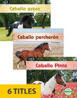Caballos (Horses) (Set of 6) (Paperback)