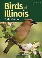 Birds of Illinois Field Guide - Bird Identification Guides (Paperback)