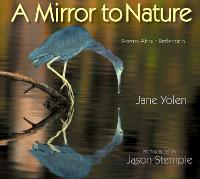 Mirror to Nature, A: Poems about Reflection (Paperback)