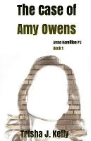 The Case of Amy Owens: Anna Hamilton Mysteries - Anna Hamilton Mysteries 1 (Paperback)