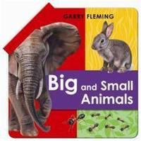 Big and Small Animals (Hardback)