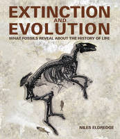 Extinction and Evolution (Hardback)
