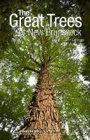 The Great Trees of New Brunswick (Paperback)