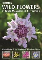 Common wild flowers of Table Mountain & Silvermine (Paperback)