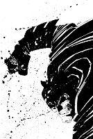 Absolute The Dark Knight (Hardback)