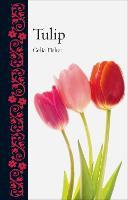 Tulip - Botanical (Hardback)