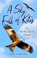 A Sky Full of Kites: A Rewilding Story (Paperback)