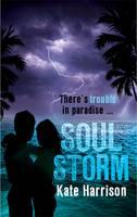 Soul Beach: Soul Storm: Book 3 - Soul Beach (Paperback)