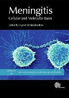 Meningitis: Cellular and Molecular Basis - Advances in Molecular and Cellular Microbiology (Hardback)