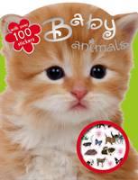 Baby Animals Colouring and Sticker Fun (Newsprint)