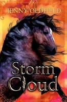 Storm Cloud (Paperback)