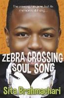 Zebra Crossing Soul Song