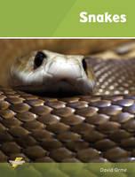 Snakes: Set 1 - Thunderbolts (Paperback)