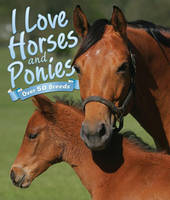 I Love: Horses and Ponies