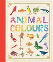 First Concept: Animal Colours (Hardback)